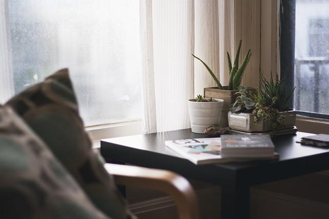 dom kao iz casopisa biljke sigma nekretnine zrenjanin