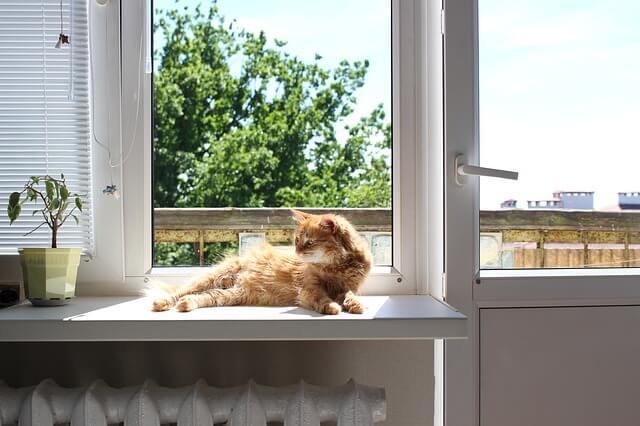 računi za grejanje prozor sigma nekretnine zrenjanin