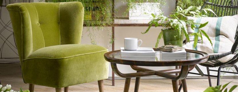 zelena boja u domu naslovna1 sigma nekretnine zrenjanin