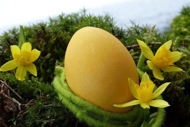 uskršnja jaja žuta sigma nekretnine zrenjanin