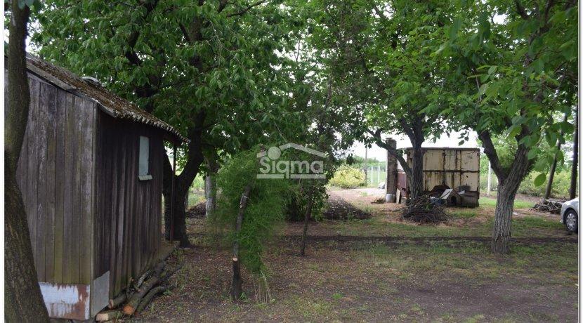 vocnjak ranc prodaja sigma nekretnine zrenjanin19
